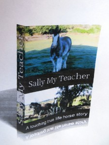Sally Book Cover 1