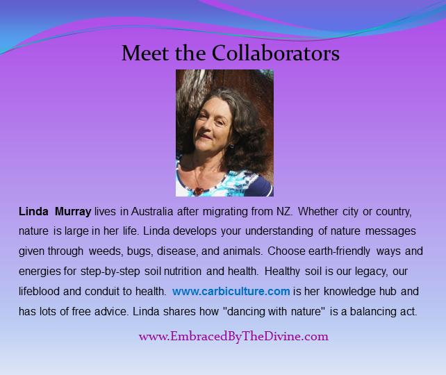 Meet the Collaborators - Linda Murray